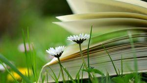 Buch auf Blumenwiese