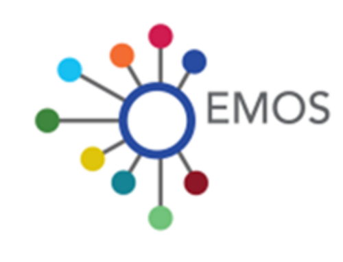 This picture shos the logo of EMOS (European Master in Official Statistics).