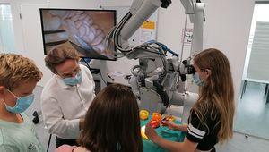 """OP am """"offenen Gehirn"""" am JKU Zentrum für medizinische Lehre bei Neurochirurg Univ.-Prof. Dr. Andreas Gruber bei den Science Holidays 2020"""